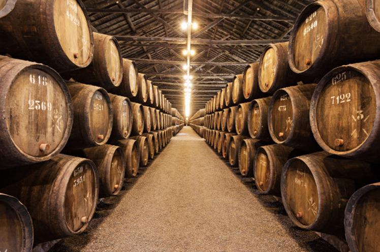 Nace Sevilla Wines & Co, una empresa dedicada al enoturismo