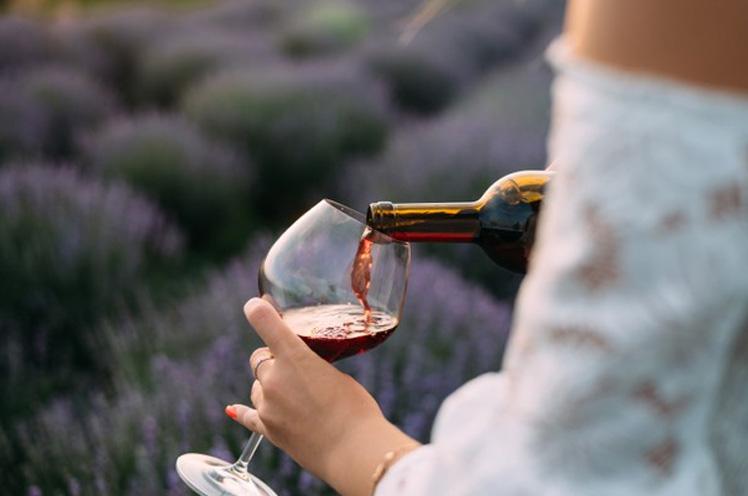 ¿Quién dijo que en la provincia de Sevilla no había vinos?